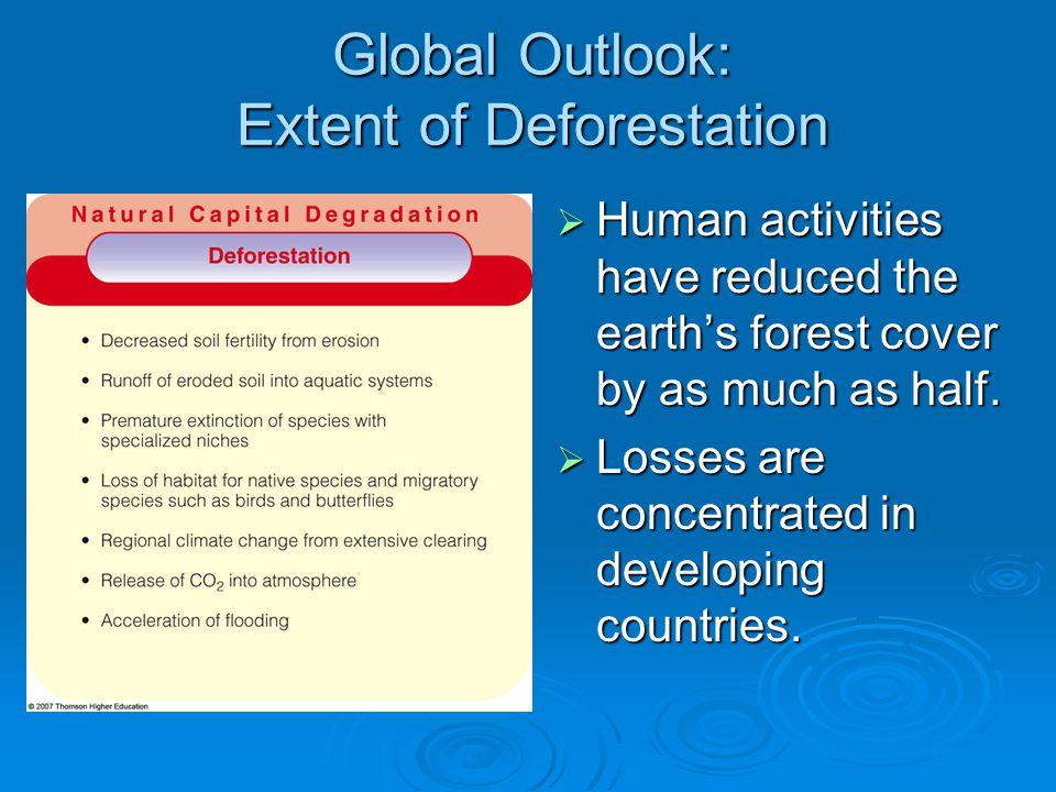 Global Outlook: Extent of Deforestation