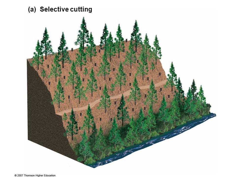 (a) Selective cutting Figure 10.9 Major tree harvesting methods.