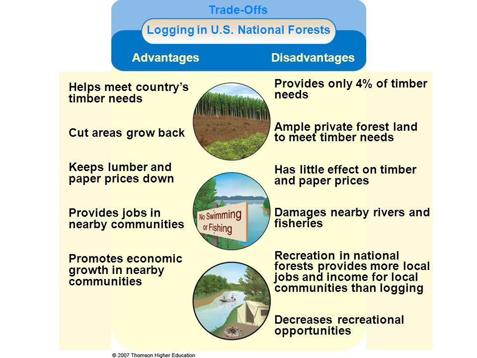 Logging in U.S. National Forests