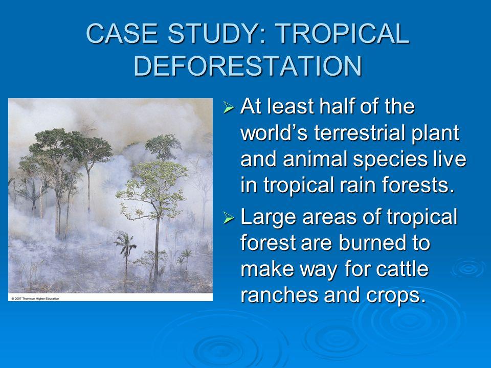 CASE STUDY: TROPICAL DEFORESTATION