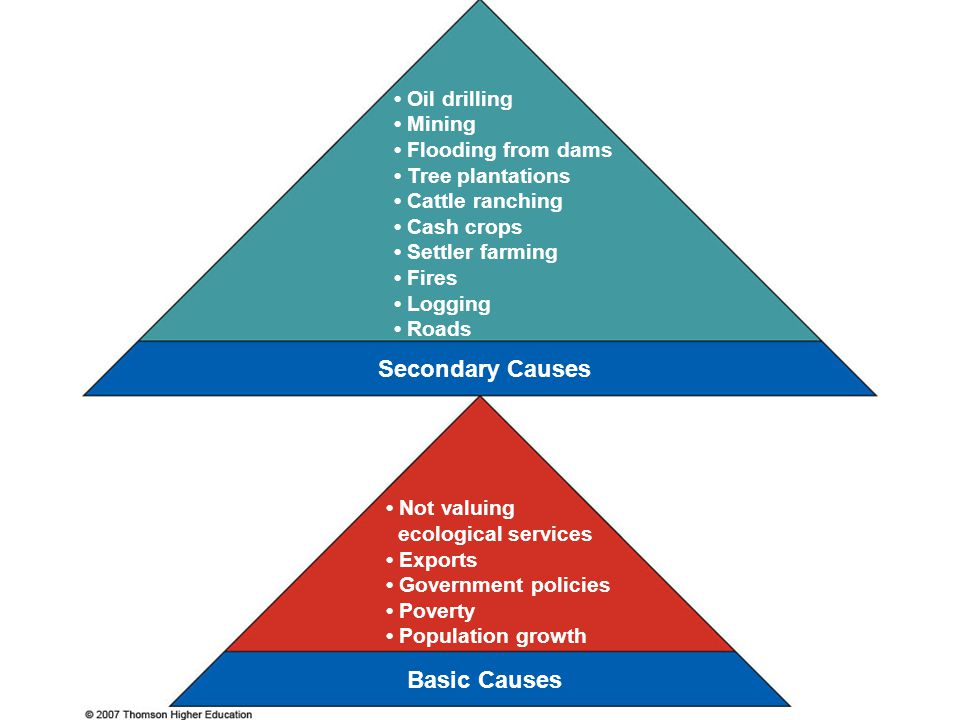 Secondary Causes Basic Causes • Oil drilling • Mining
