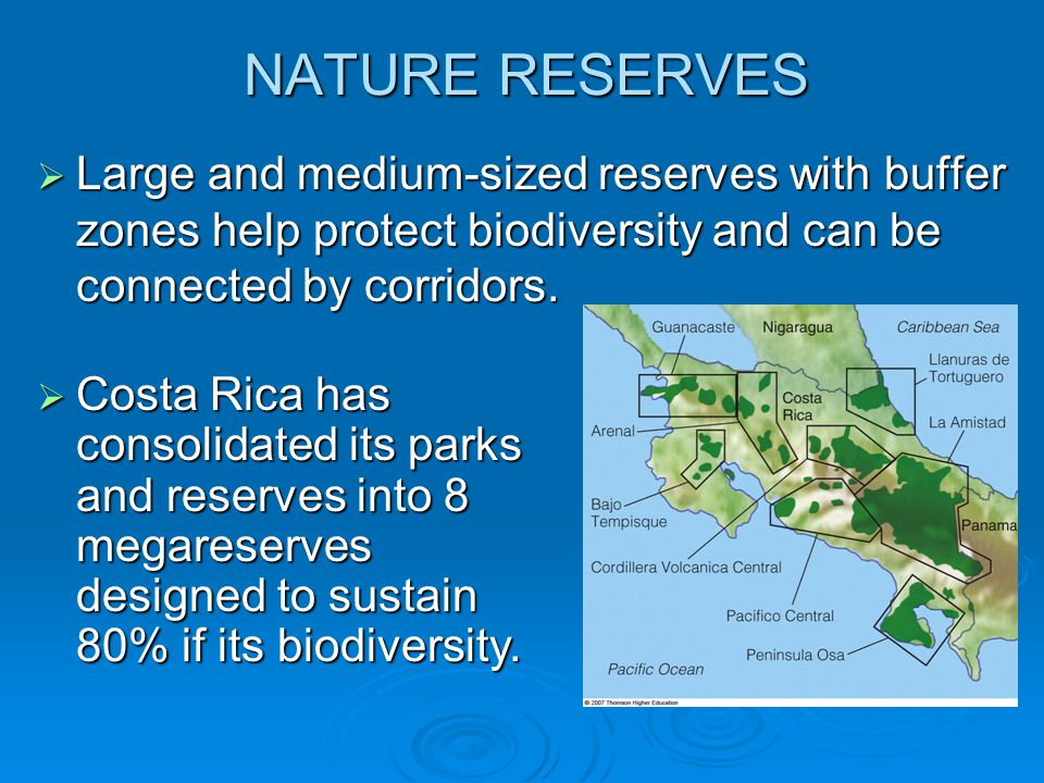 NATURE RESERVES Large and medium-sized reserves with buffer zones help protect biodiversity and can be connected by corridors.
