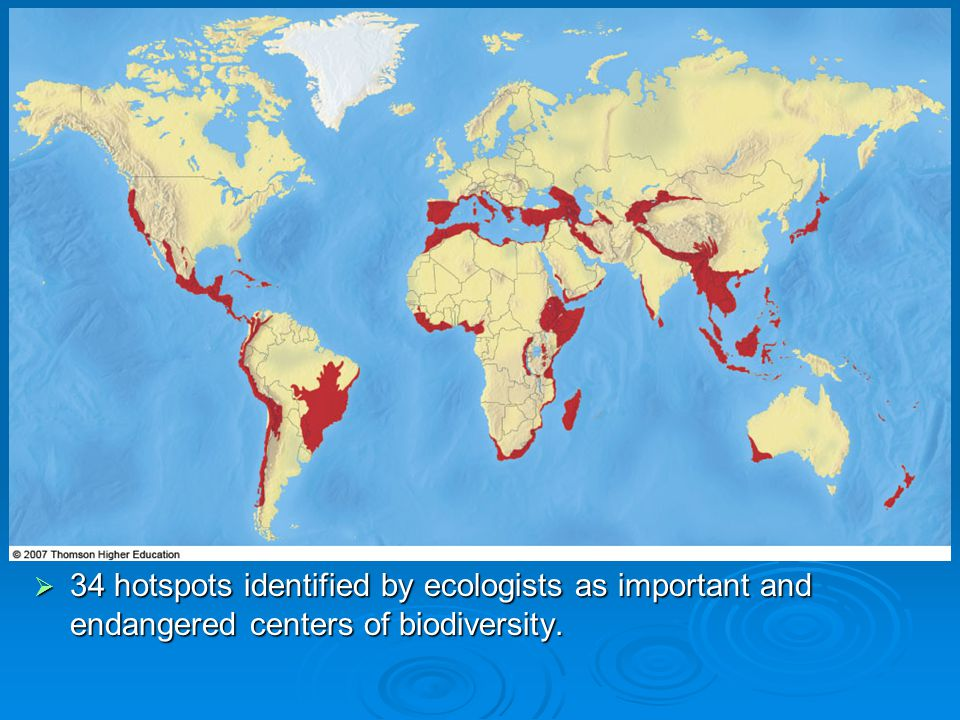 34 hotspots identified by ecologists as important and endangered centers of biodiversity.