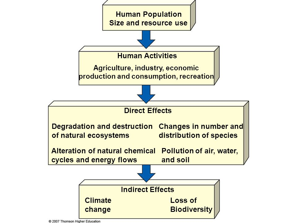 Agriculture, industry, economic production and consumption, recreation