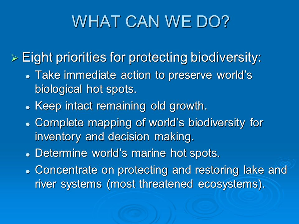 WHAT CAN WE DO Eight priorities for protecting biodiversity: