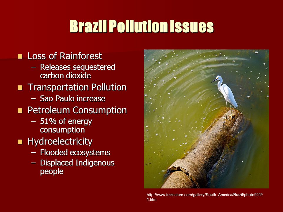Brazil Pollution Issues