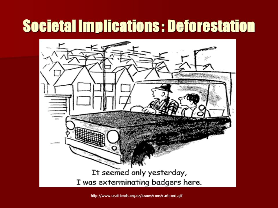 Societal Implications : Deforestation