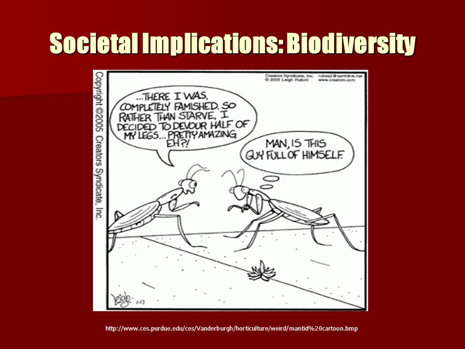 Societal Implications: Biodiversity