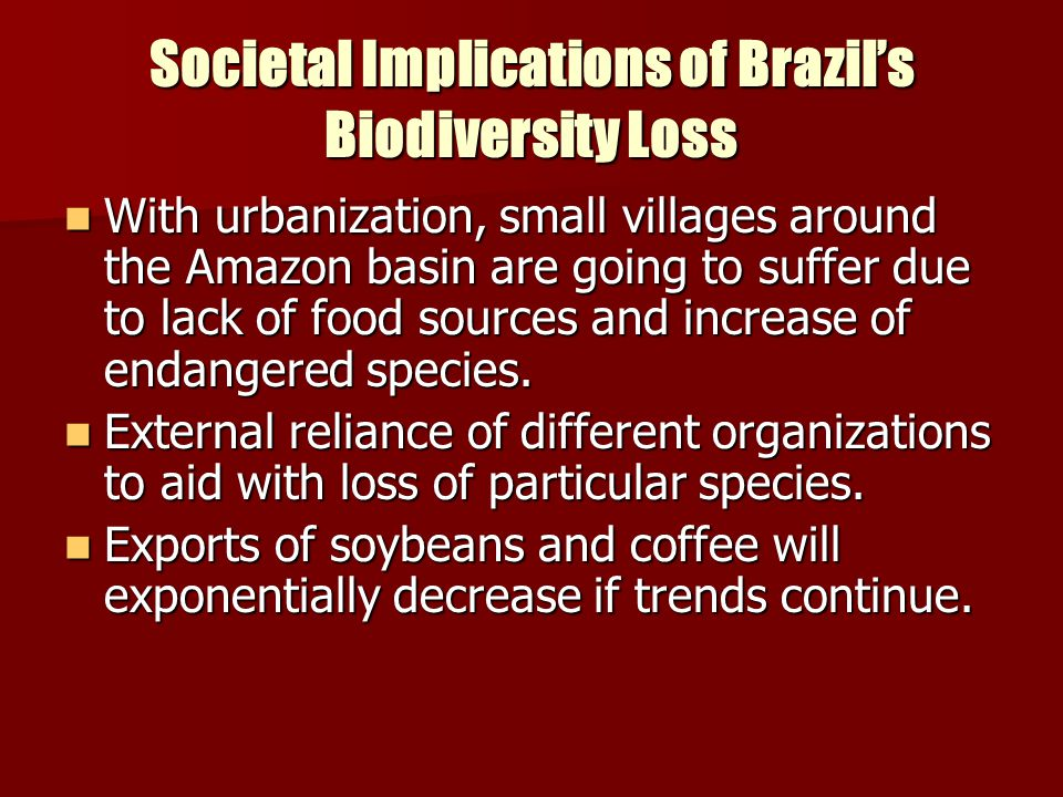 Societal Implications of Brazil's Biodiversity Loss