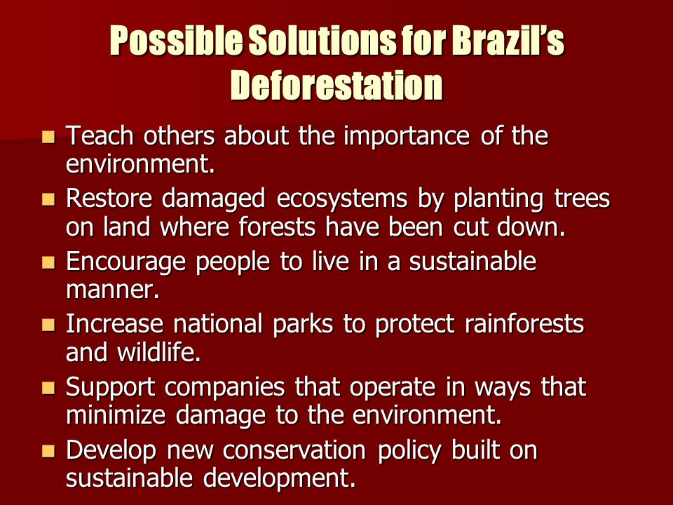 Possible Solutions for Brazil's Deforestation