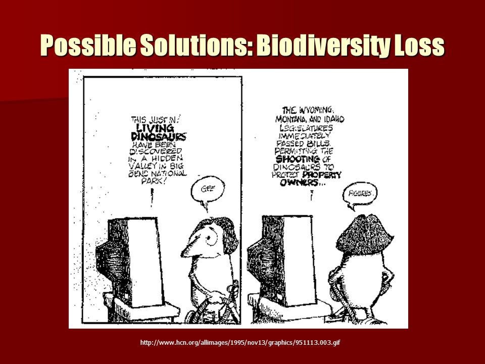 Possible Solutions: Biodiversity Loss