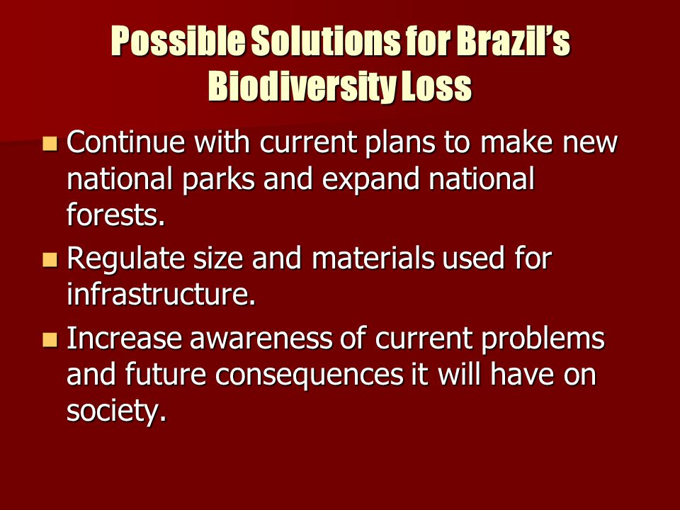 Possible Solutions for Brazil's Biodiversity Loss