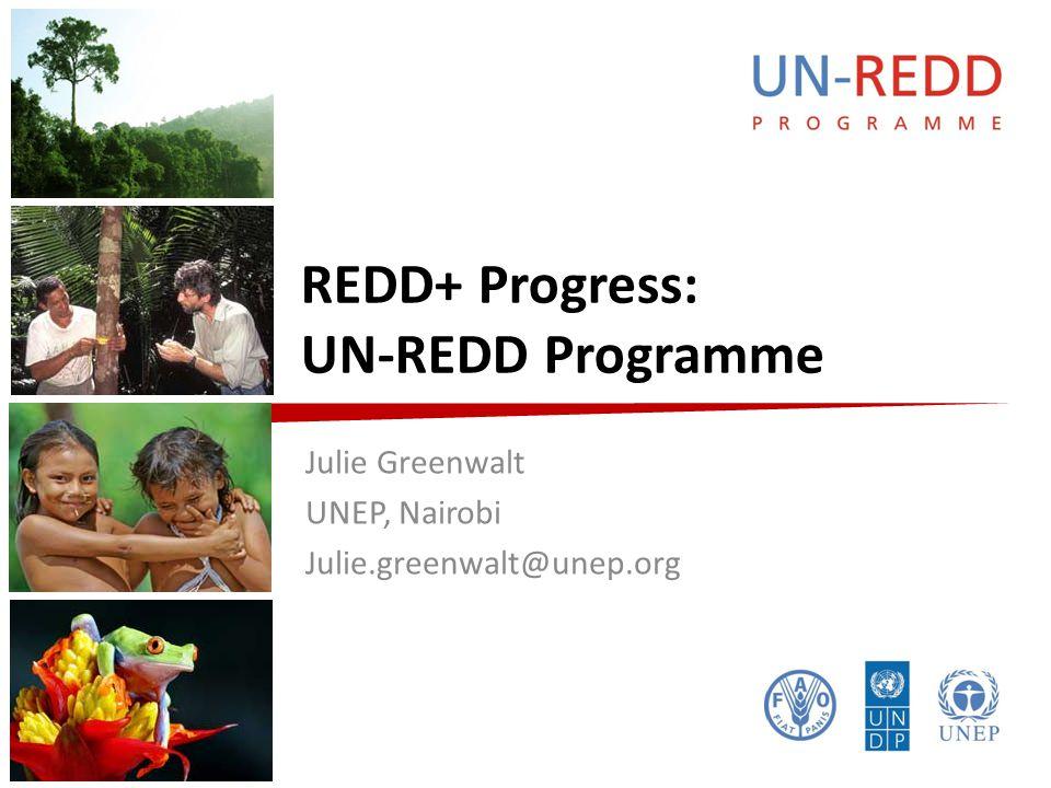 REDD+ Progress: UN-REDD Programme