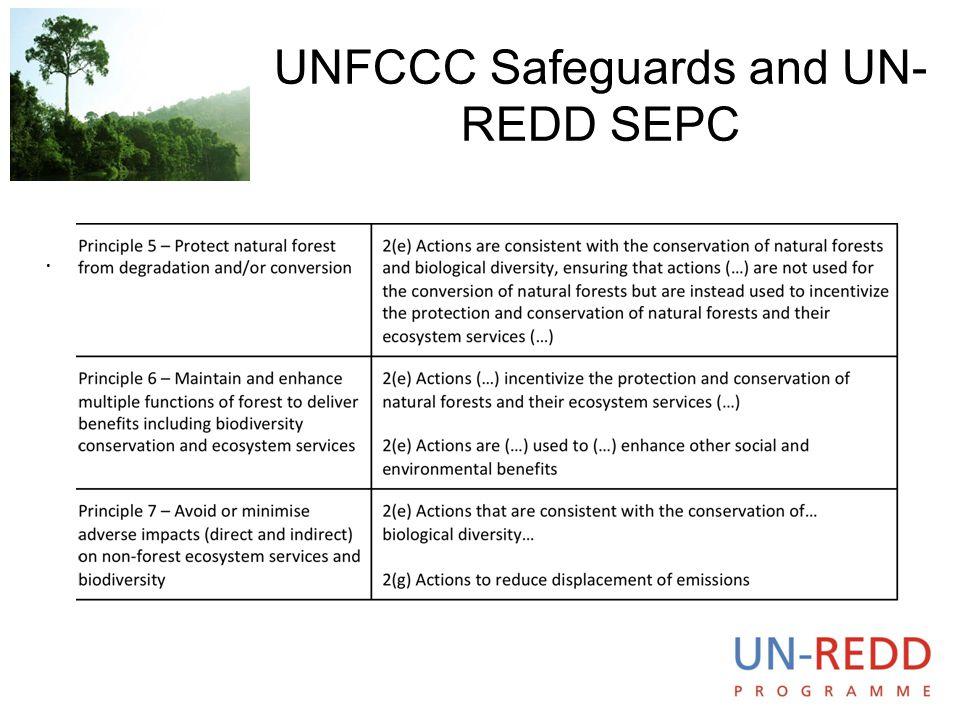 UNFCCC Safeguards and UN-REDD SEPC
