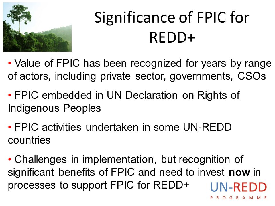 Significance of FPIC for REDD+
