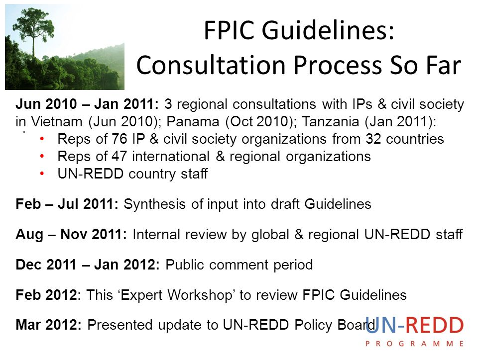 FPIC Guidelines: Consultation Process So Far
