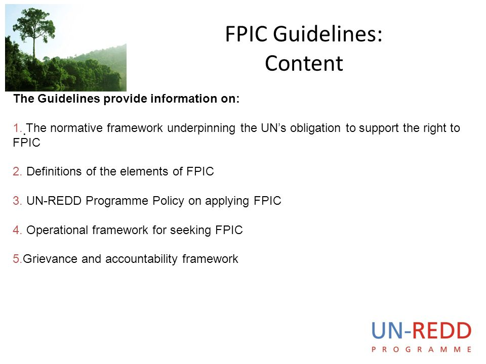 FPIC Guidelines: Content