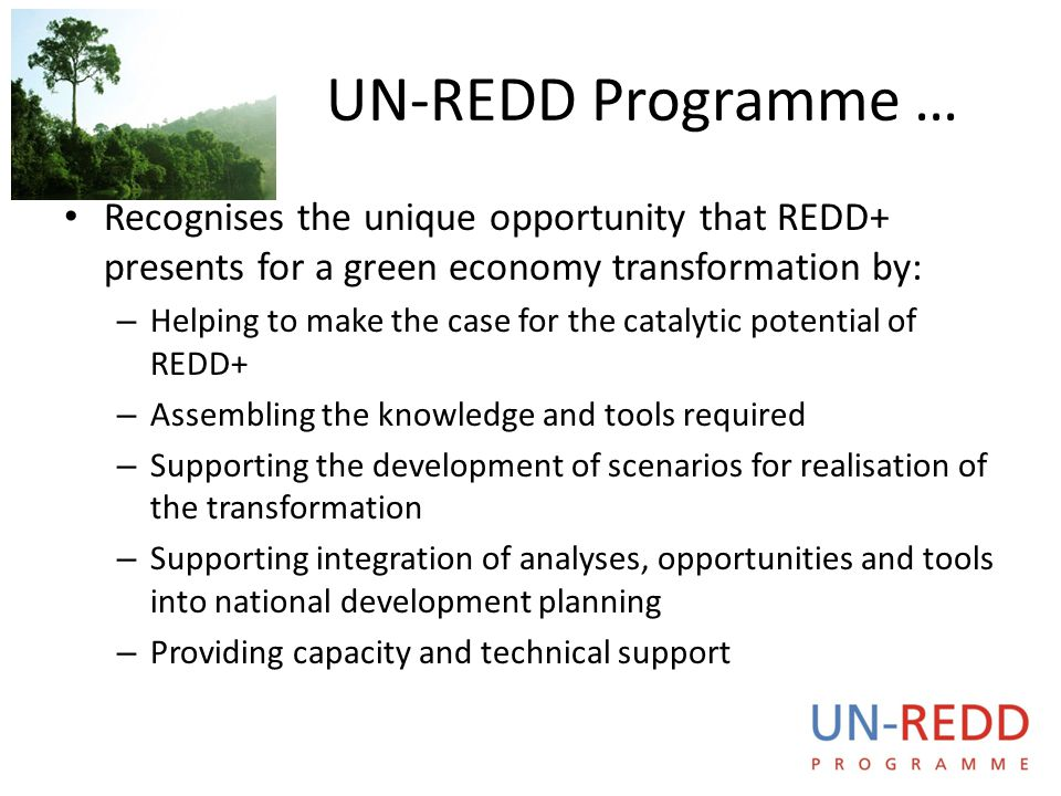 UN-REDD Programme … Recognises the unique opportunity that REDD+ presents for a green economy transformation by: