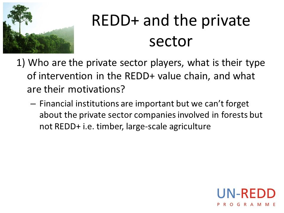 REDD+ and the private sector