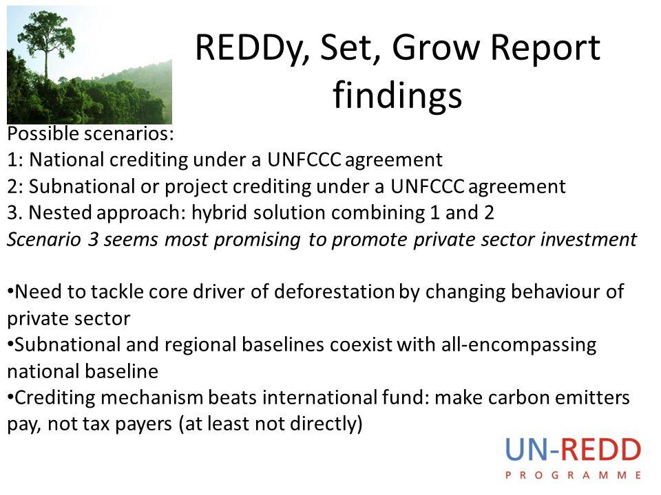 REDDy, Set, Grow Report findings