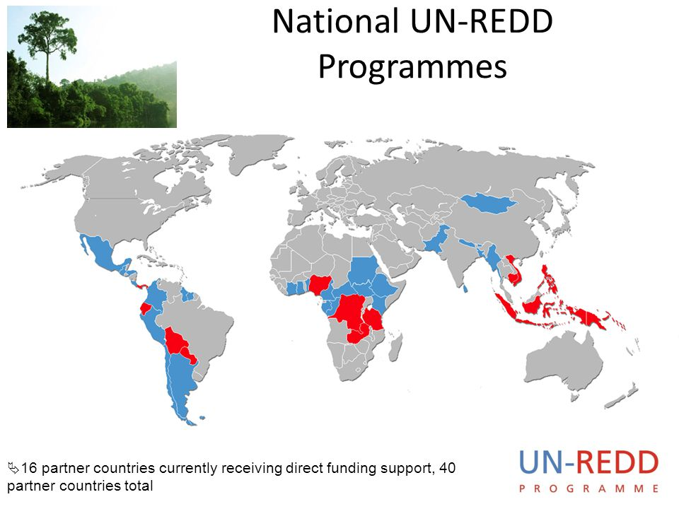 National UN-REDD Programmes