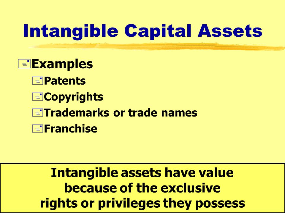 Intangible Capital Assets