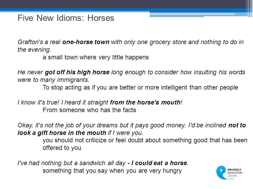 Five New Idioms: Horses