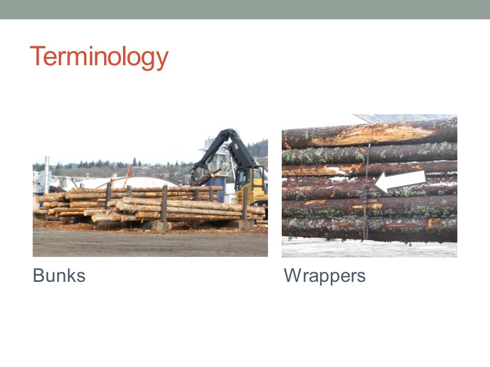 Terminology Bunks Wrappers