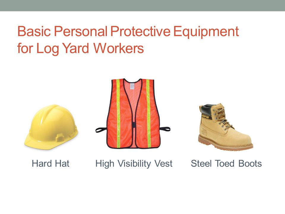 Basic Personal Protective Equipment for Log Yard Workers