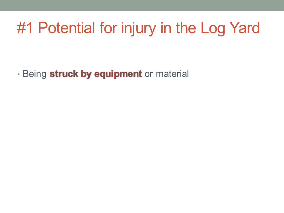 #1 Potential for injury in the Log Yard