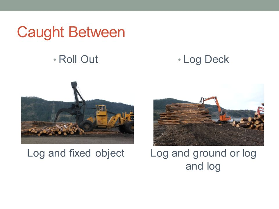 Log and ground or log and log