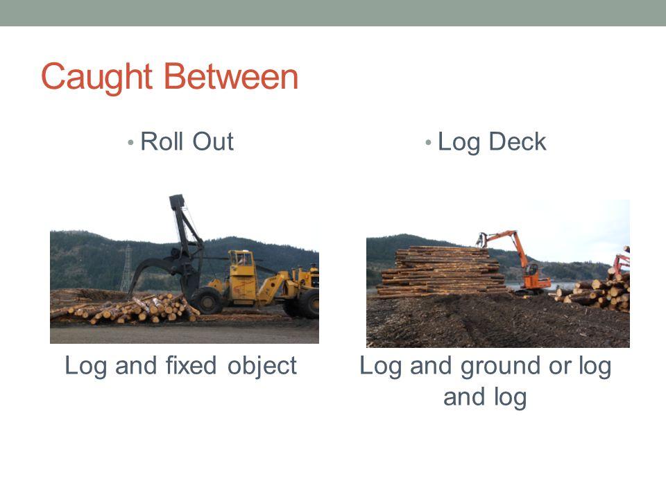 Log and ground or log and log
