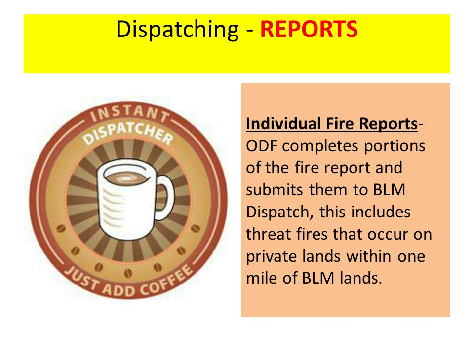 Dispatching - REPORTS