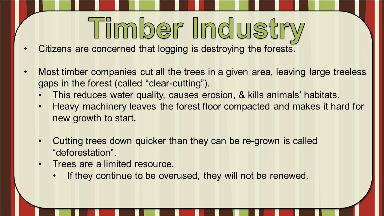 Timber Industry Citizens are concerned that logging is destroying the forests.