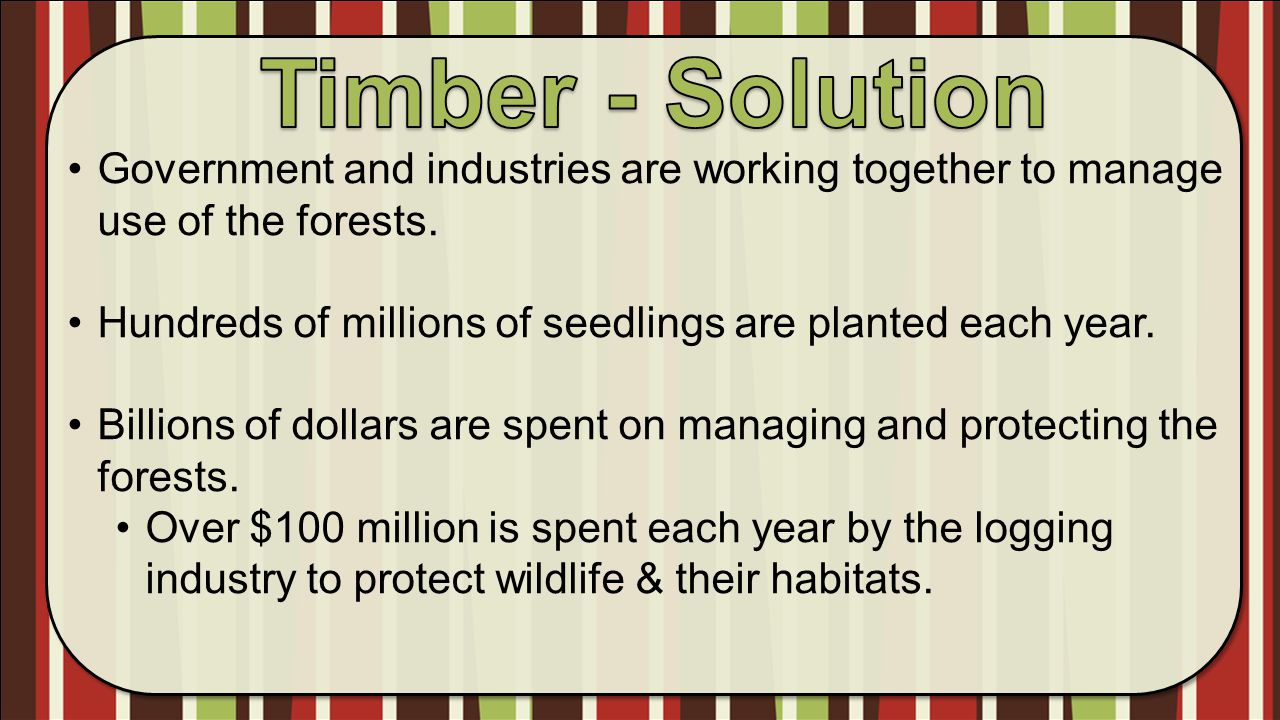 Timber - Solution Government and industries are working together to manage use of the forests.