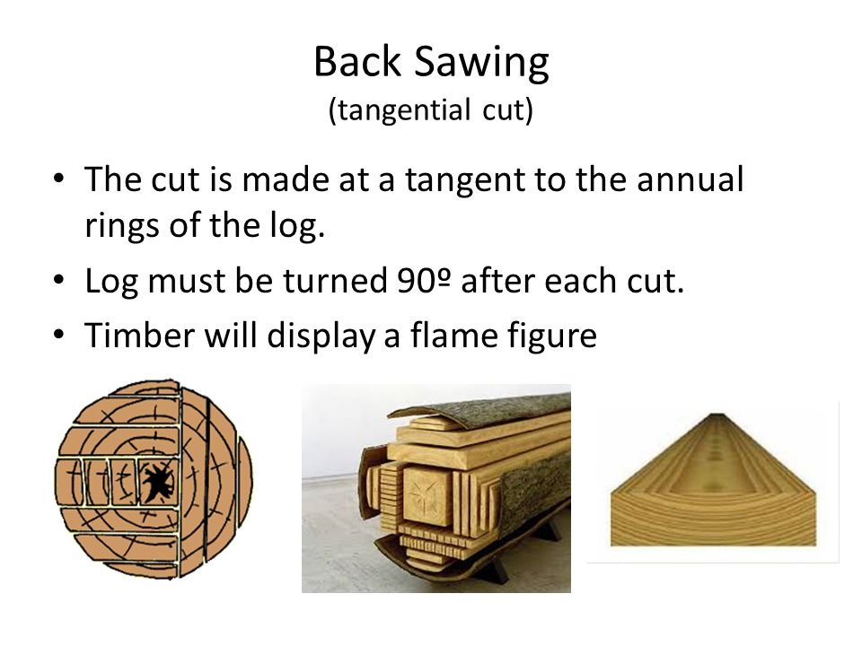 Back Sawing (tangential cut)