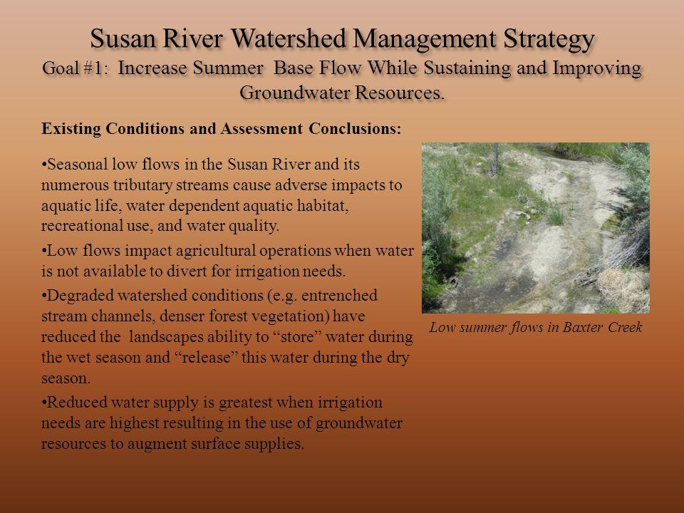 Low summer flows in Baxter Creek