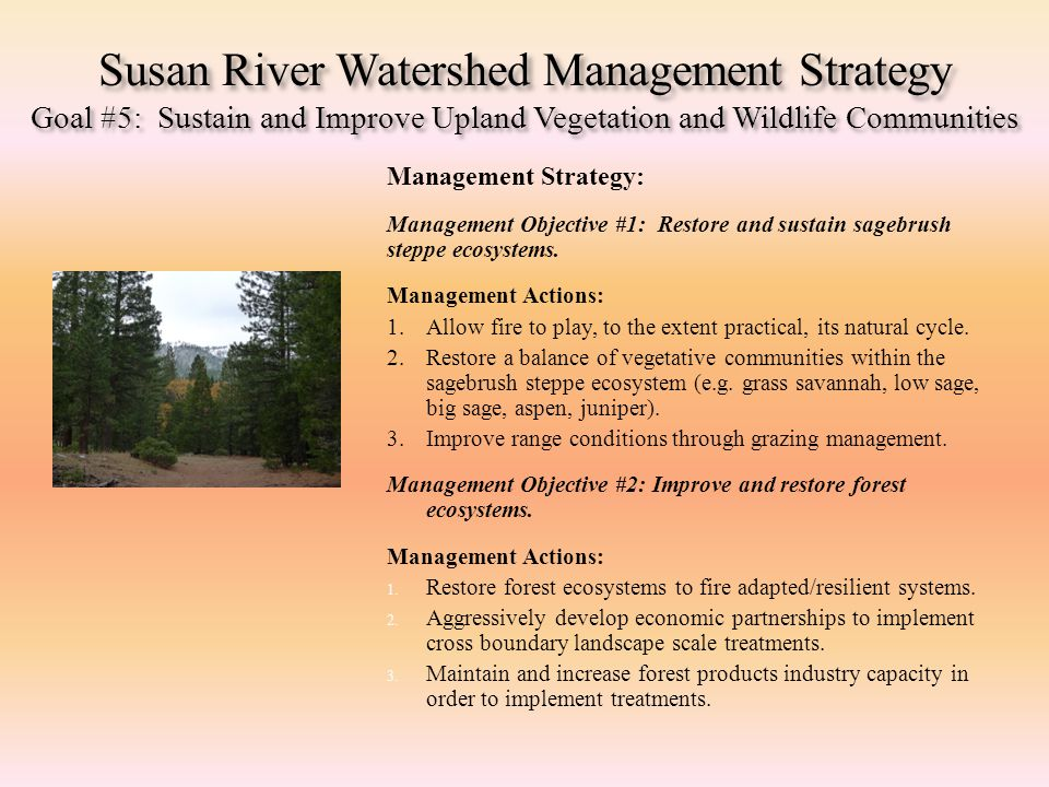 Susan River Watershed Management Strategy Goal #5: Sustain and Improve Upland Vegetation and Wildlife Communities