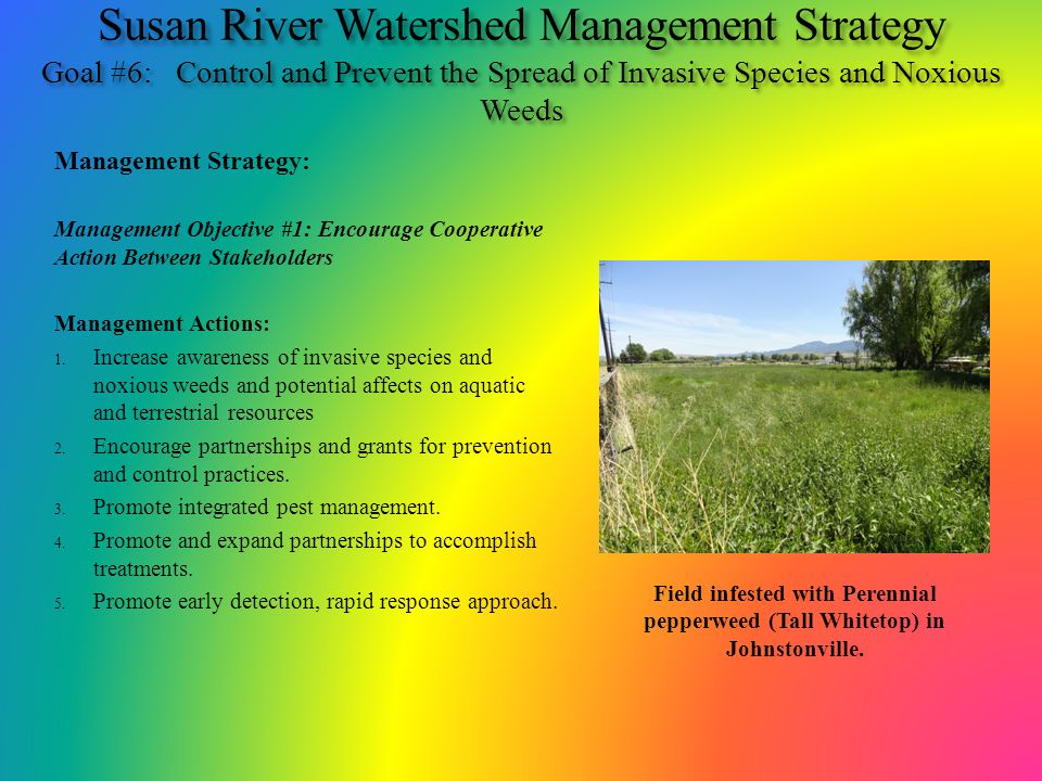 Susan River Watershed Management Strategy Goal #6: Control and Prevent the Spread of Invasive Species and Noxious Weeds