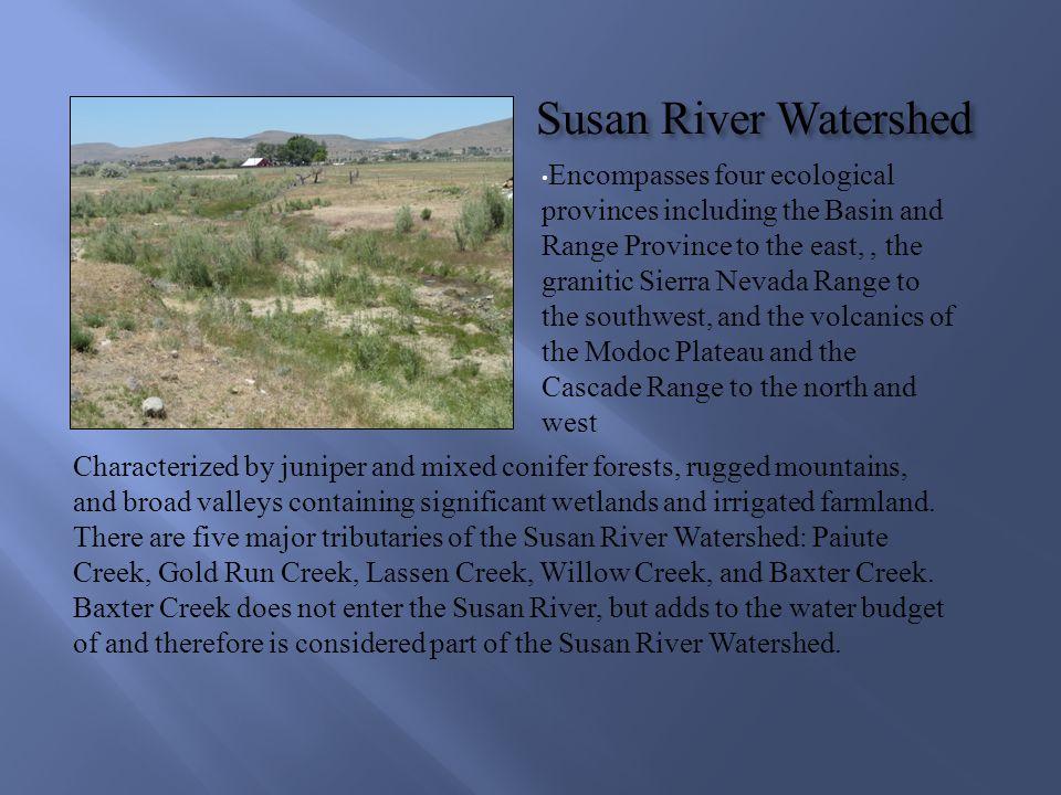 Susan River Watershed