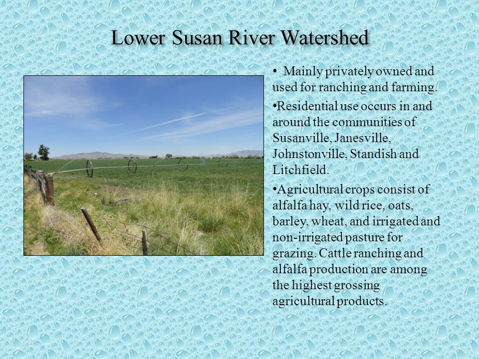 Lower Susan River Watershed