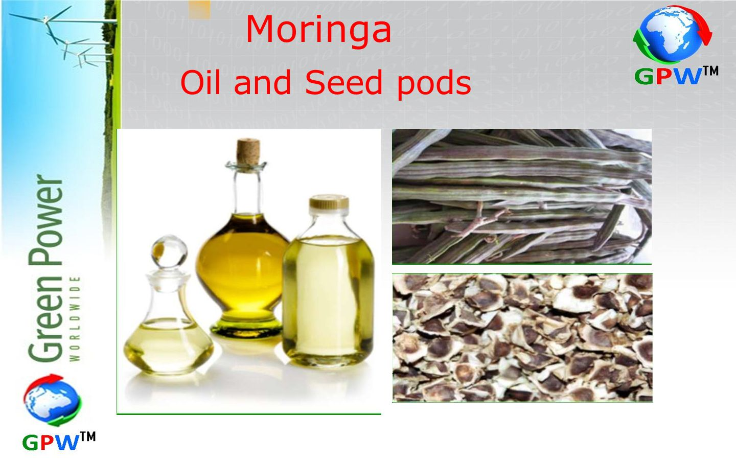 Moringa Oil and Seed pods