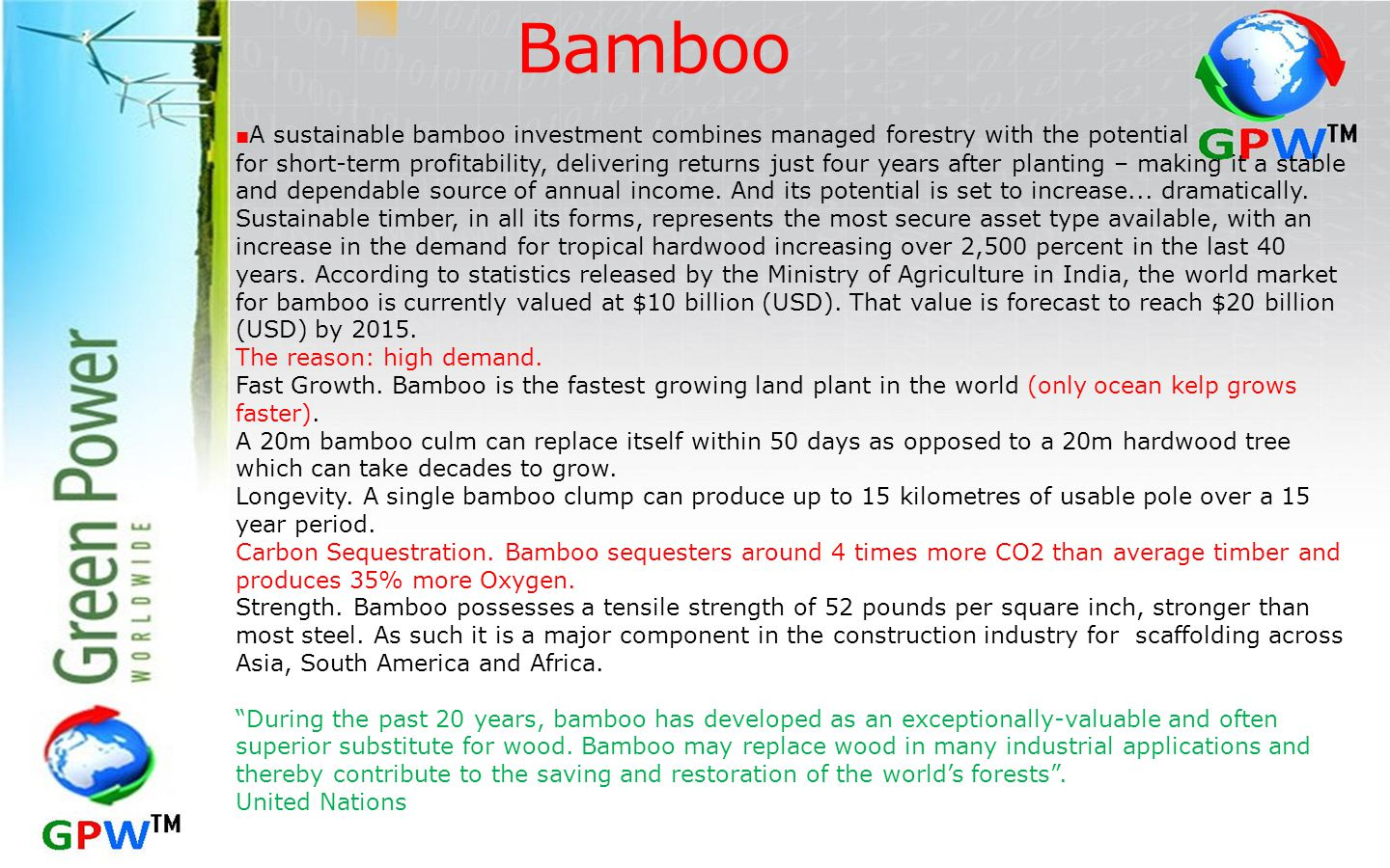 Bamboo ■A sustainable bamboo investment combines managed forestry with the potential.
