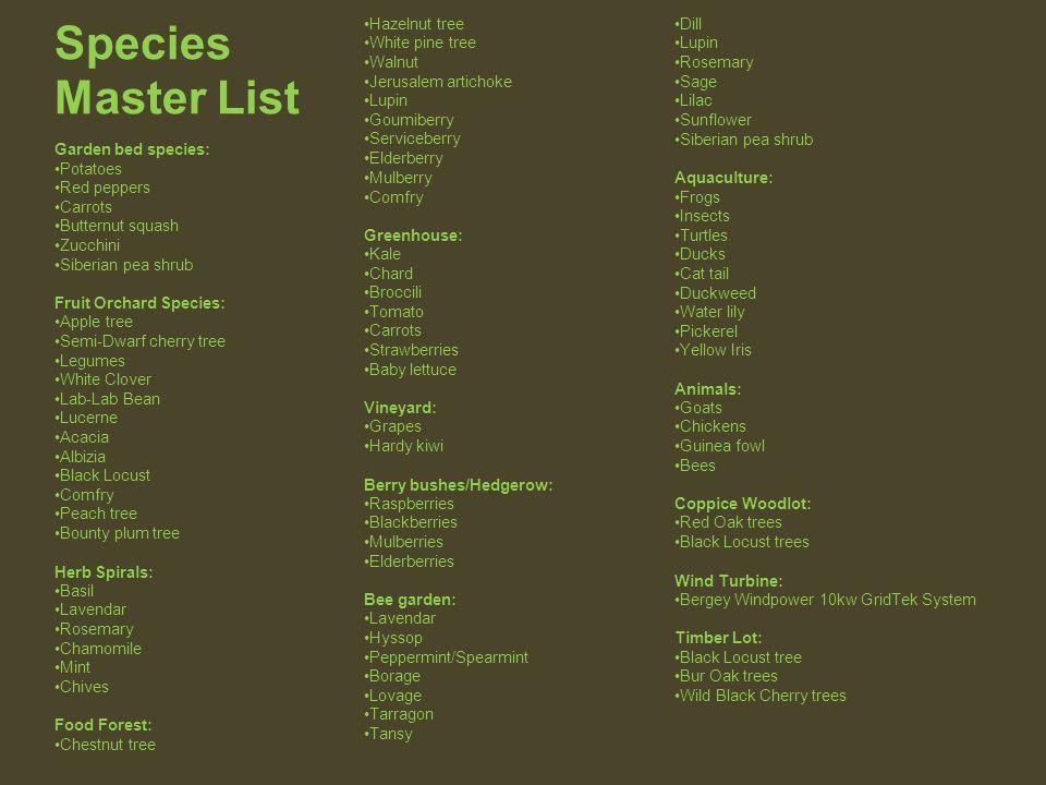 Species Master List Hazelnut tree Dill White pine tree Walnut