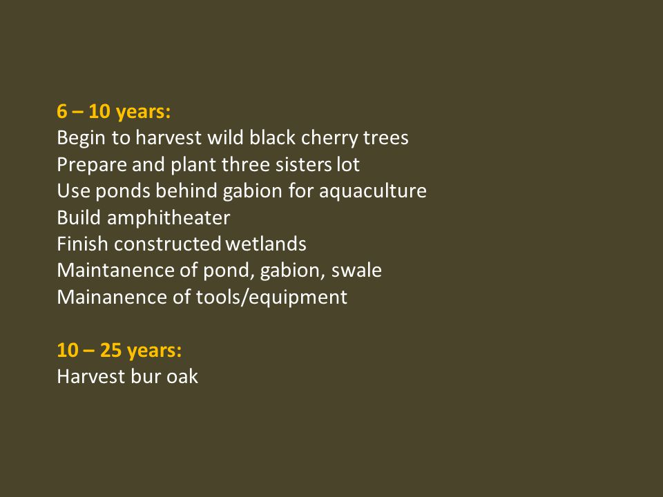 6 – 10 years: Begin to harvest wild black cherry trees. Prepare and plant three sisters lot. Use ponds behind gabion for aquaculture.