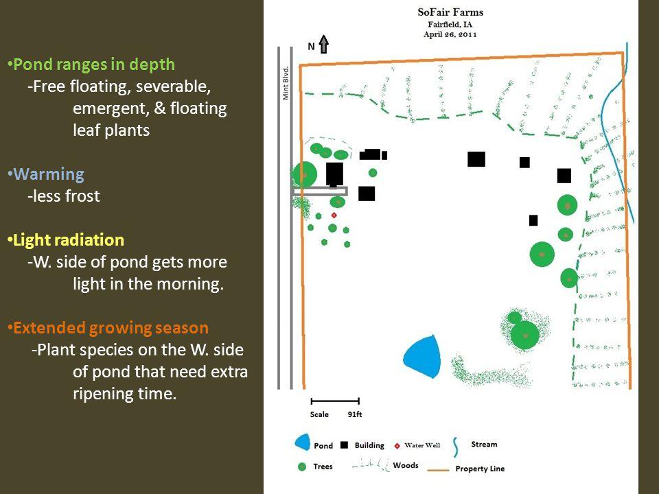 Pond ranges in depth -Free floating, severable, emergent, & floating leaf plants. Warming. -less frost.