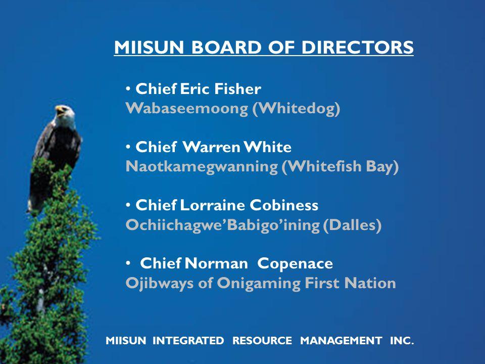 MIISUN BOARD OF DIRECTORS