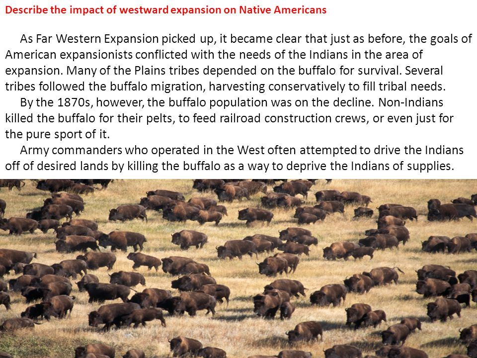 Describe the impact of westward expansion on Native Americans