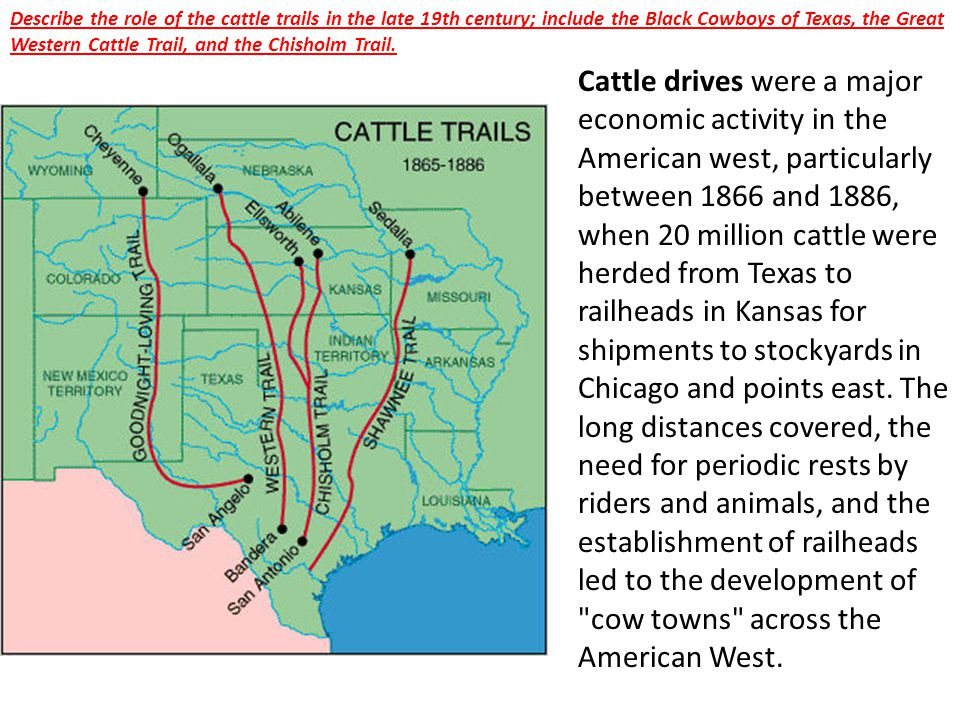 Describe the role of the cattle trails in the late 19th century; include the Black Cowboys of Texas, the Great Western Cattle Trail, and the Chisholm Trail.