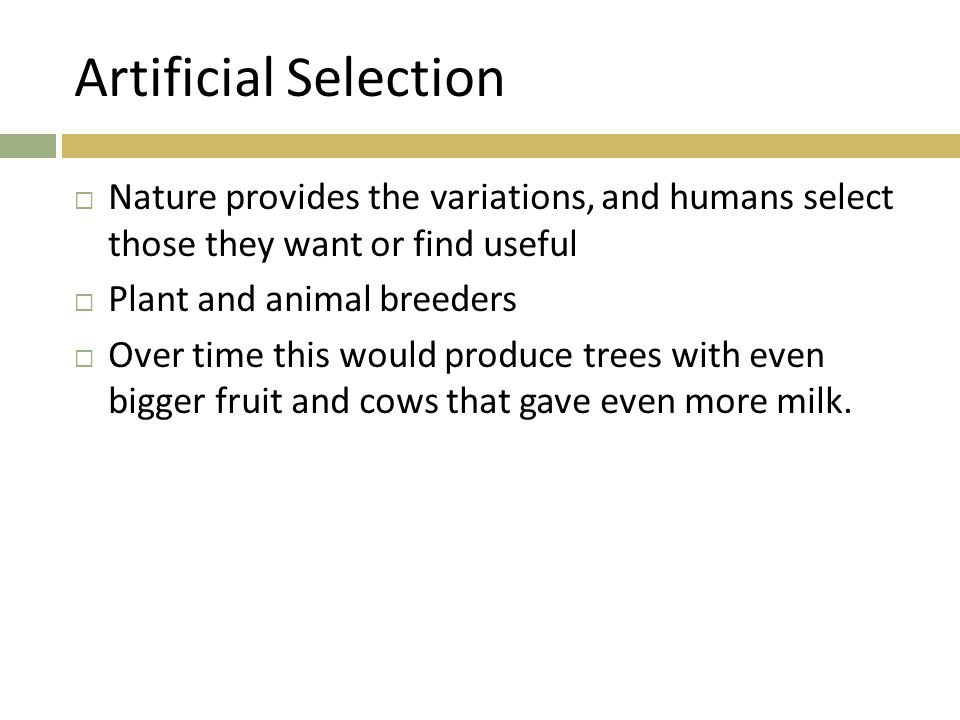 Artificial Selection Nature provides the variations, and humans select those they want or find useful.